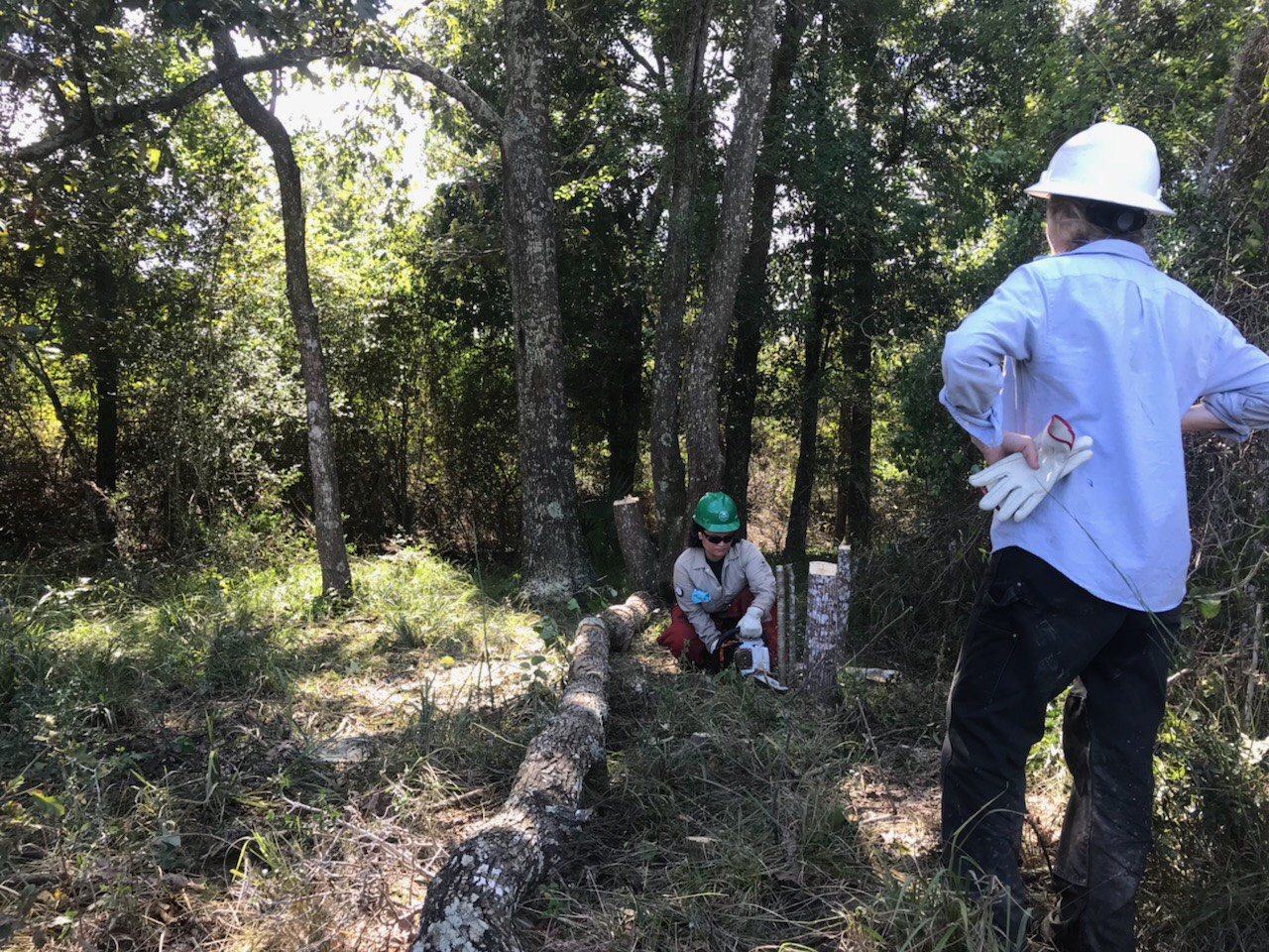 Aqua Crew at Armand Bayou Nature Center – Conservation Corps